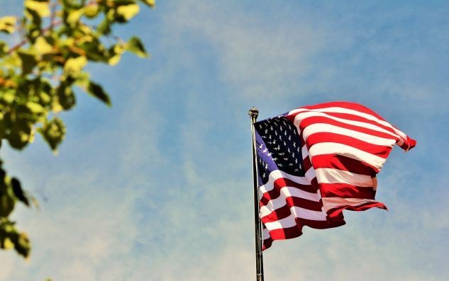 American Flag in the distance with a branch on the side