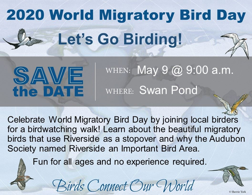 World Migratory Bird Day Image - 2-14-2020