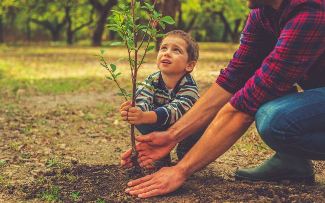 Curious-little-boy-helping-his-father-to-plant-the-tree-while-working-together-in-the-garden