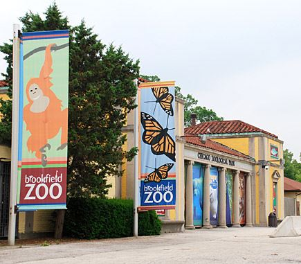 Brookfield Zoo side of building with pictures of monkeys and butterflies.