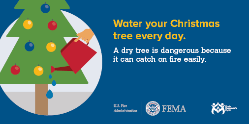 Water Your Christmas Tree Every Day