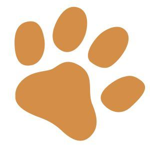 Orange Wildlife Paw Print